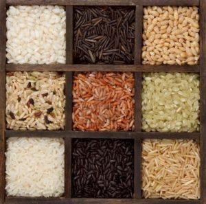 Det du inte visste om ris